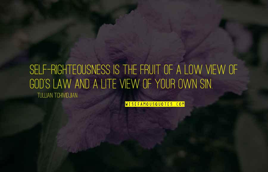 Low Self Quotes By Tullian Tchividjian: Self-righteousness is the fruit of a low view