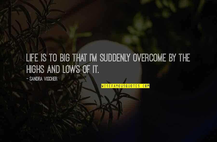 Lows And Highs Quotes By Sandra Vischer: Life is to BIG that I'm suddenly overcome