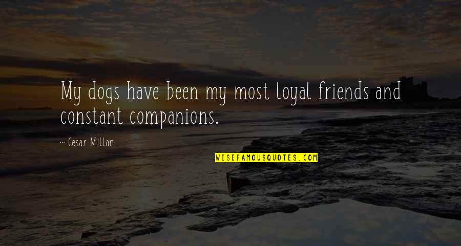 Loyal Best Friends Quotes By Cesar Millan: My dogs have been my most loyal friends