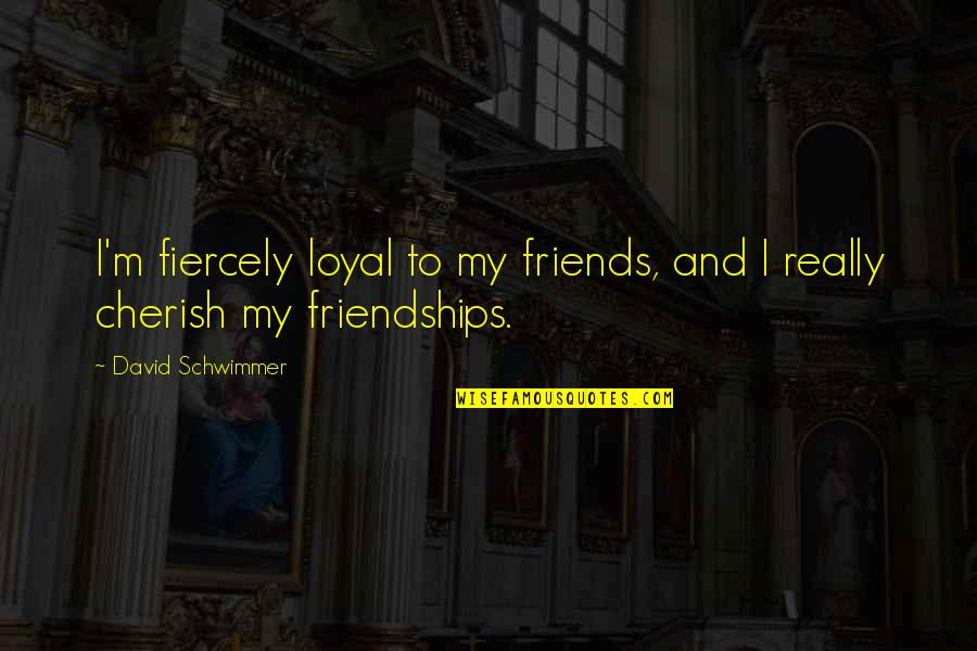 Loyal Best Friends Quotes By David Schwimmer: I'm fiercely loyal to my friends, and I