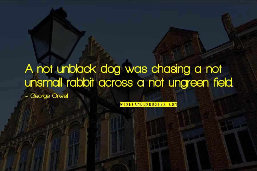 Lubby Dubby Quotes By George Orwell: A not unblack dog was chasing a not