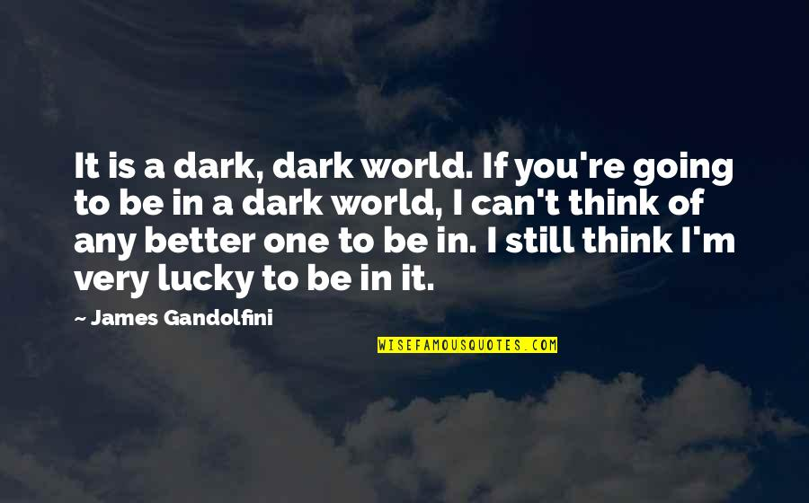 Lucky Quotes By James Gandolfini: It is a dark, dark world. If you're