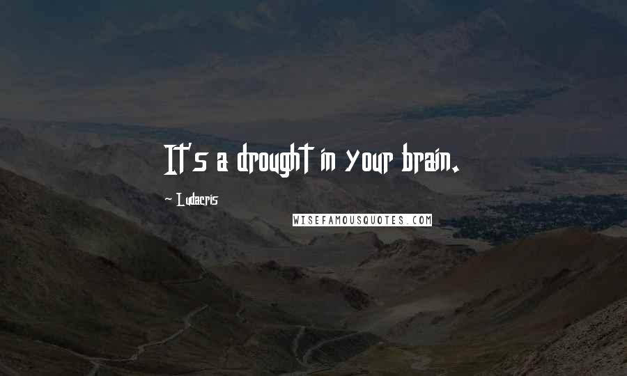 Ludacris quotes: It's a drought in your brain.