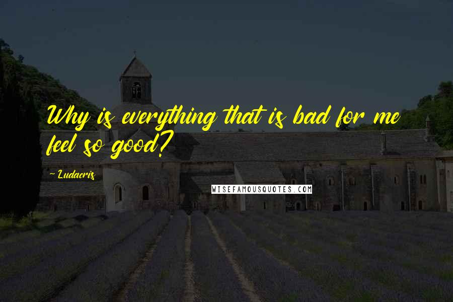 Ludacris quotes: Why is everything that is bad for me feel so good?