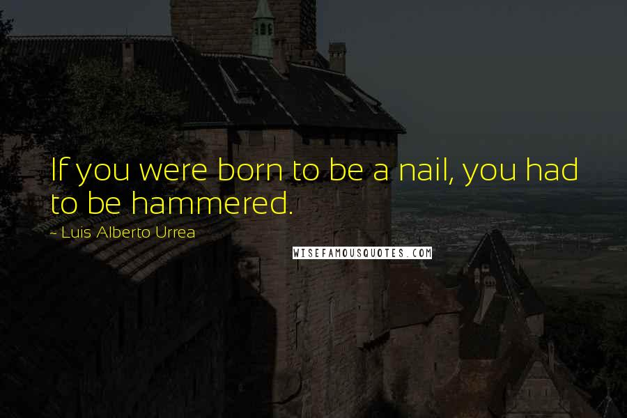 Luis Alberto Urrea quotes: If you were born to be a nail, you had to be hammered.