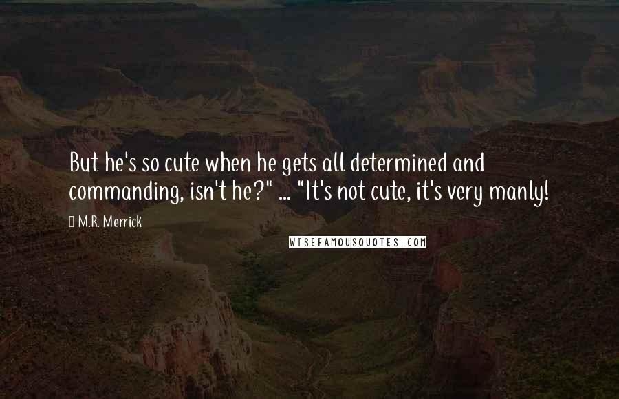 """M.R. Merrick quotes: But he's so cute when he gets all determined and commanding, isn't he?"""" ... """"It's not cute, it's very manly!"""