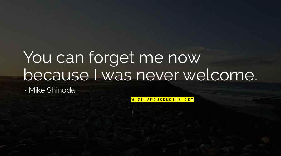 M Shinoda Quotes By Mike Shinoda: You can forget me now because I was