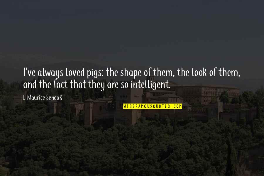 Mad Lovers Quotes By Maurice Sendak: I've always loved pigs: the shape of them,