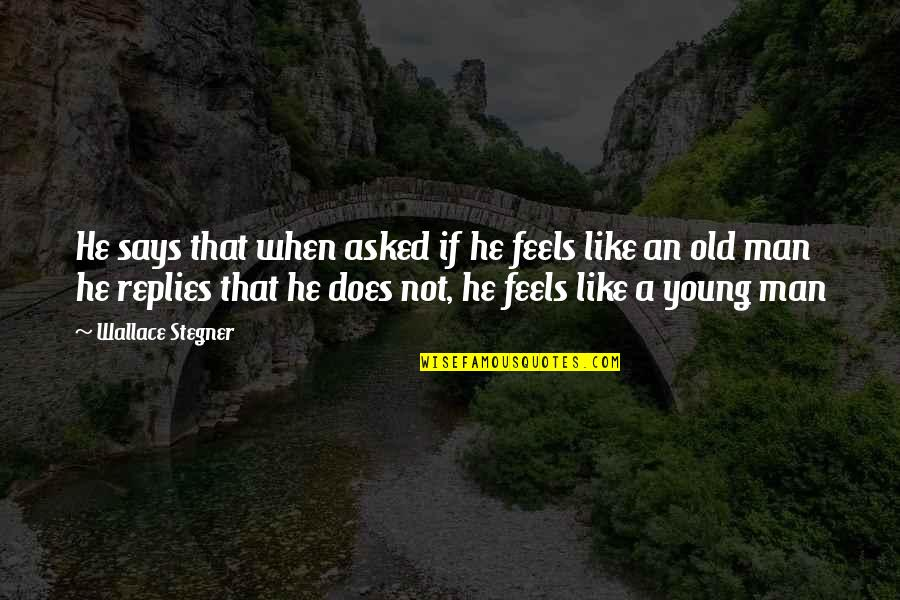 Madhouse Movie Quotes By Wallace Stegner: He says that when asked if he feels