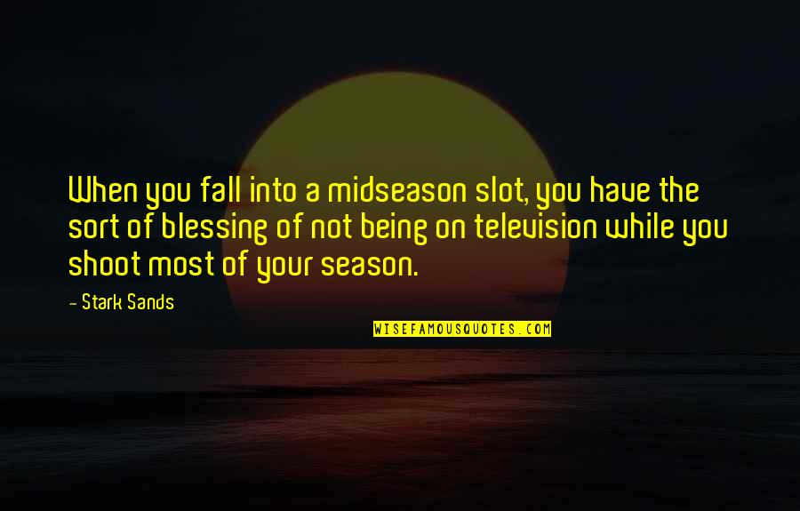 Magazine Spread Quotes By Stark Sands: When you fall into a midseason slot, you