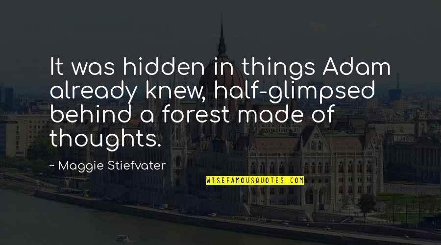 Maggie Stiefvater Quotes By Maggie Stiefvater: It was hidden in things Adam already knew,