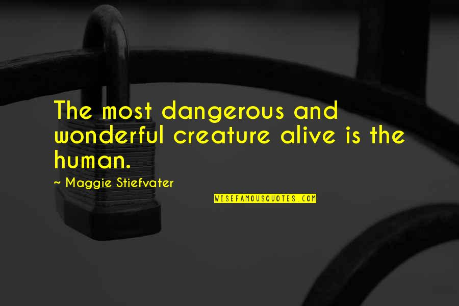 Maggie Stiefvater Quotes By Maggie Stiefvater: The most dangerous and wonderful creature alive is