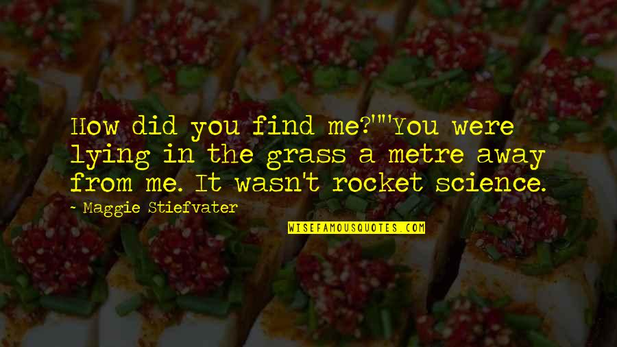 """Maggie Stiefvater Quotes By Maggie Stiefvater: How did you find me?""""""""You were lying in"""