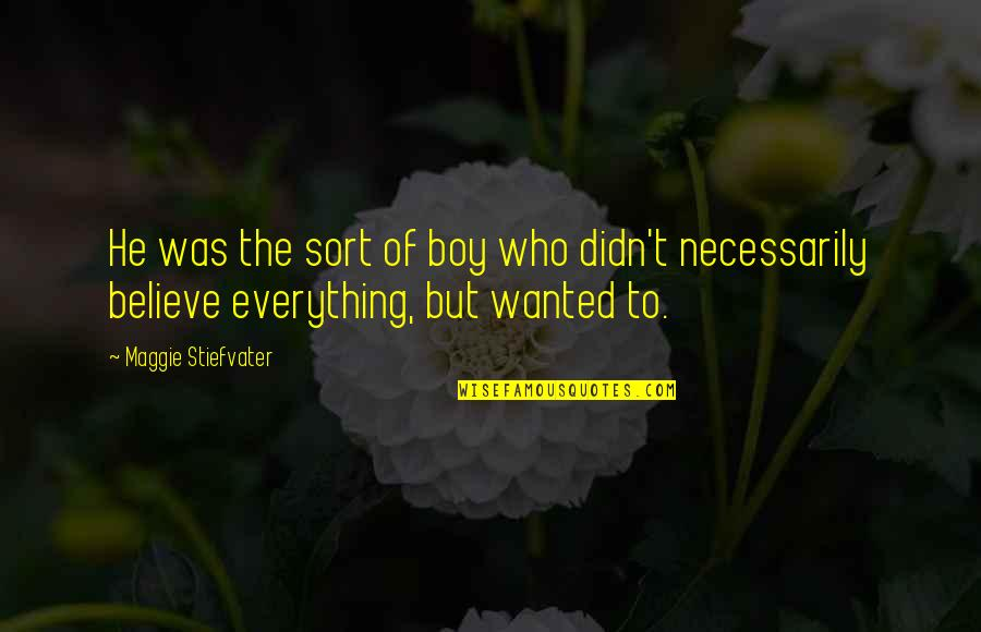 Maggie Stiefvater Quotes By Maggie Stiefvater: He was the sort of boy who didn't