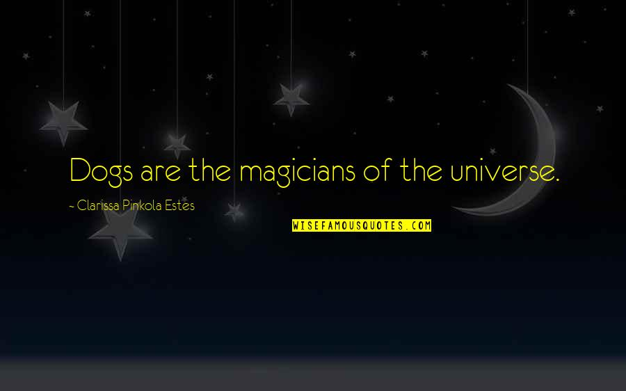 Magicians Quotes By Clarissa Pinkola Estes: Dogs are the magicians of the universe.