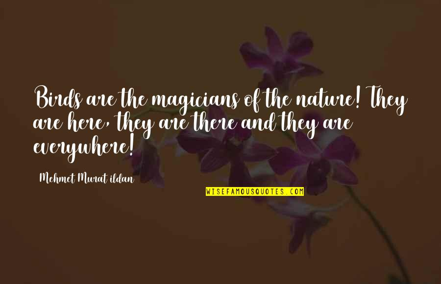 Magicians Quotes By Mehmet Murat Ildan: Birds are the magicians of the nature! They