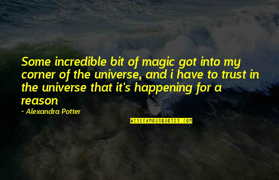 Magic's Quotes By Alexandra Potter: Some incredible bit of magic got into my