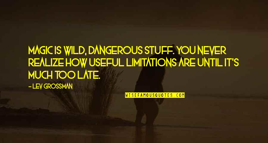 Magic's Quotes By Lev Grossman: Magic is wild, dangerous stuff. You never realize
