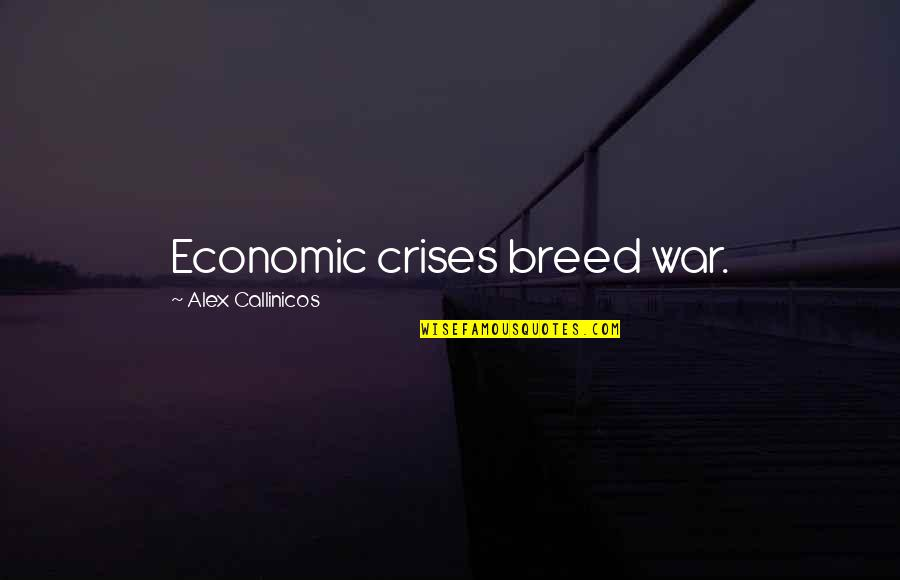 Magwitch In Great Expectations Quotes By Alex Callinicos: Economic crises breed war.