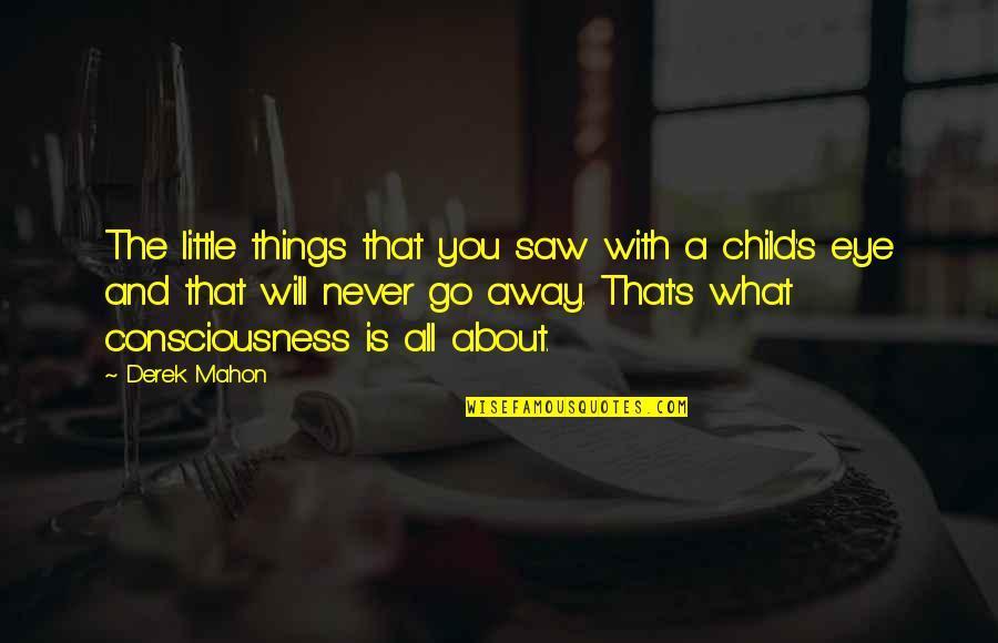 Mahon Quotes By Derek Mahon: The little things that you saw with a
