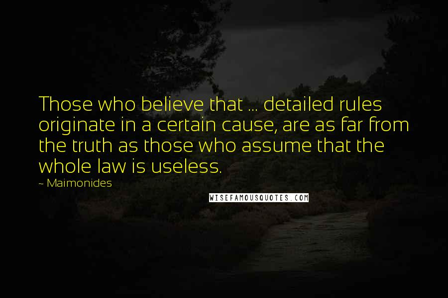 Maimonides quotes: Those who believe that ... detailed rules originate in a certain cause, are as far from the truth as those who assume that the whole law is useless.
