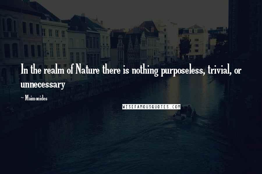 Maimonides quotes: In the realm of Nature there is nothing purposeless, trivial, or unnecessary