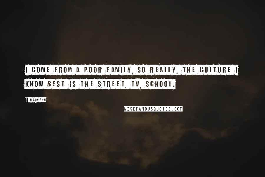 Maiwenn quotes: I come from a poor family, so really, the culture I know best is the street, TV, school.