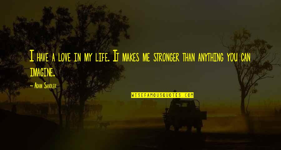 Makes You Stronger Quotes By Adam Sandler: I have a love in my life. It
