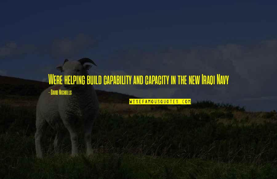 Malawian Proverbs And Quotes By David Nicholls: Were helping build capability and capacity in the