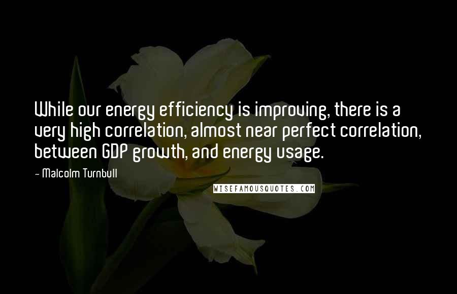 Malcolm Turnbull quotes: While our energy efficiency is improving, there is a very high correlation, almost near perfect correlation, between GDP growth, and energy usage.