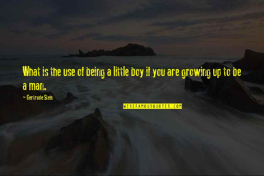 Man Boy Quotes By Gertrude Stein: What is the use of being a little