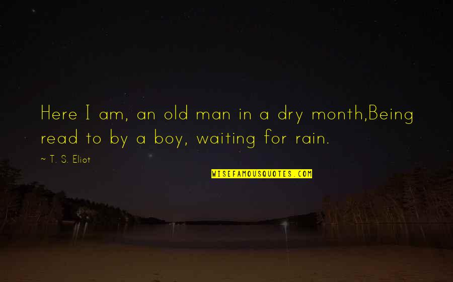 Man Boy Quotes By T. S. Eliot: Here I am, an old man in a