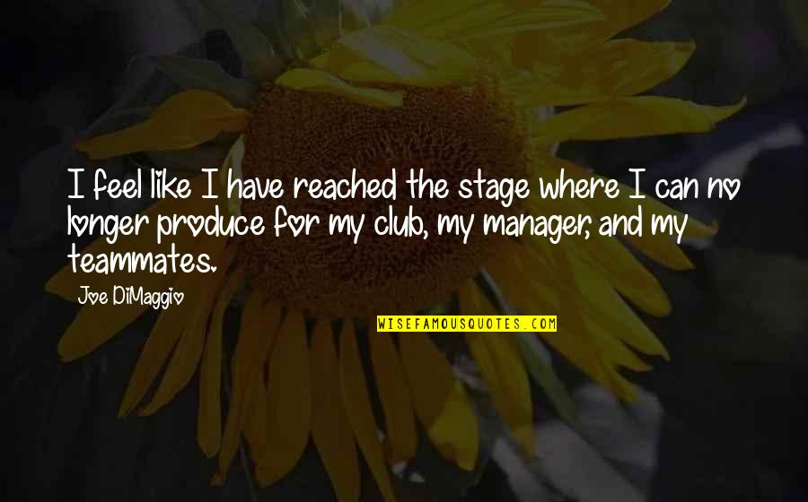 Manager Quotes By Joe DiMaggio: I feel like I have reached the stage