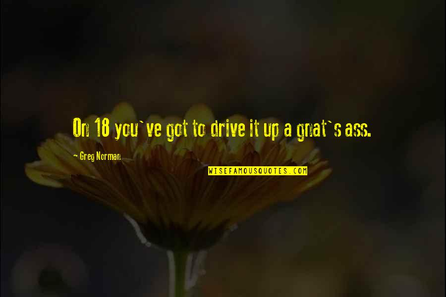 Managing Performance Quotes By Greg Norman: On 18 you've got to drive it up