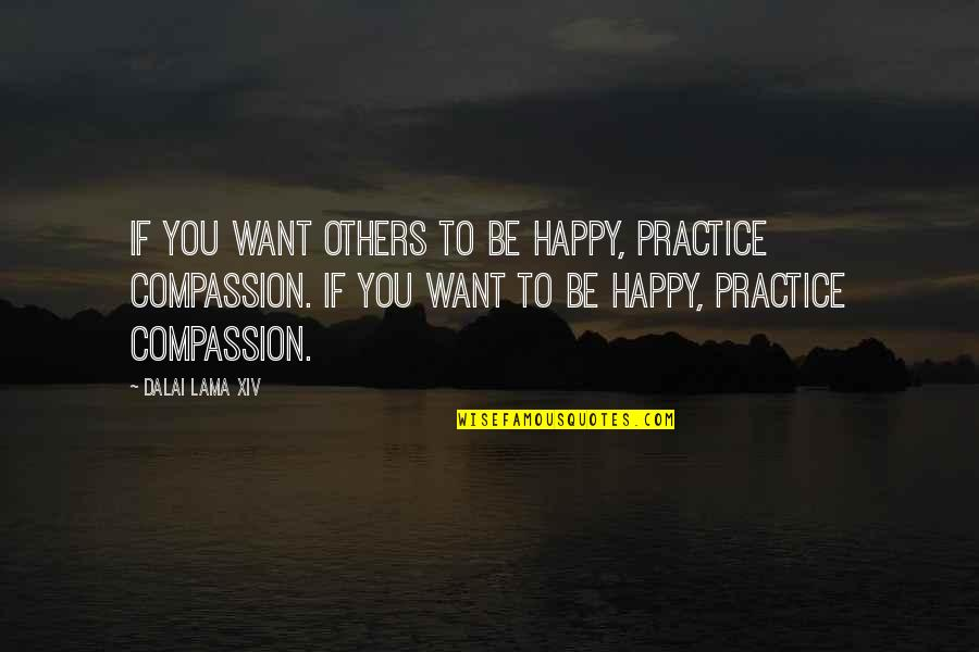 Marathon Completion Quotes By Dalai Lama XIV: If you want others to be happy, practice