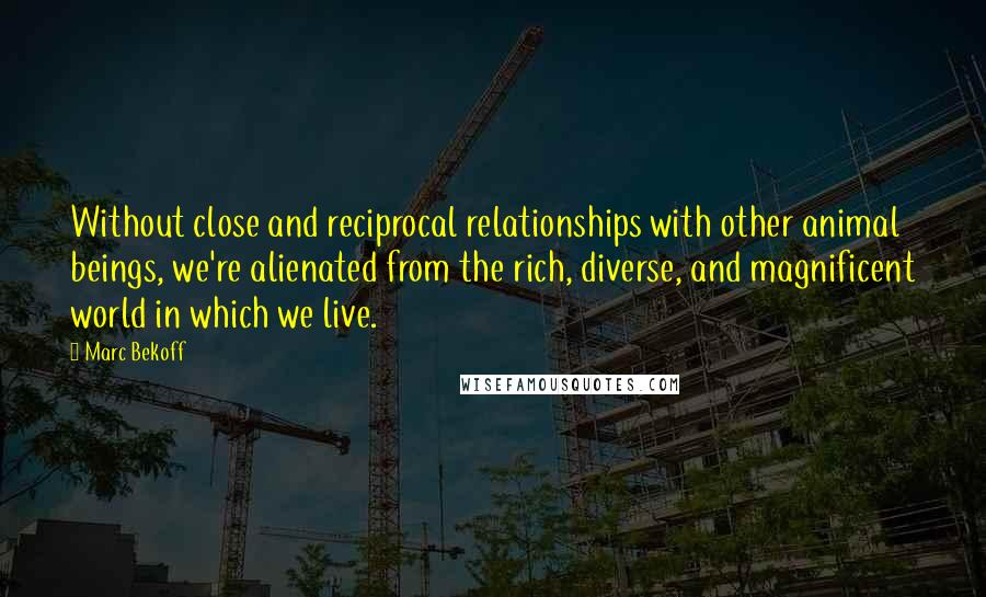 Marc Bekoff quotes: Without close and reciprocal relationships with other animal beings, we're alienated from the rich, diverse, and magnificent world in which we live.