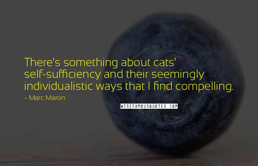 Marc Maron quotes: There's something about cats' self-sufficiency and their seemingly individualistic ways that I find compelling.