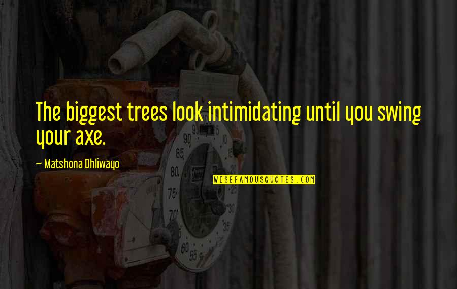 Marching Band Percussion Quotes By Matshona Dhliwayo: The biggest trees look intimidating until you swing