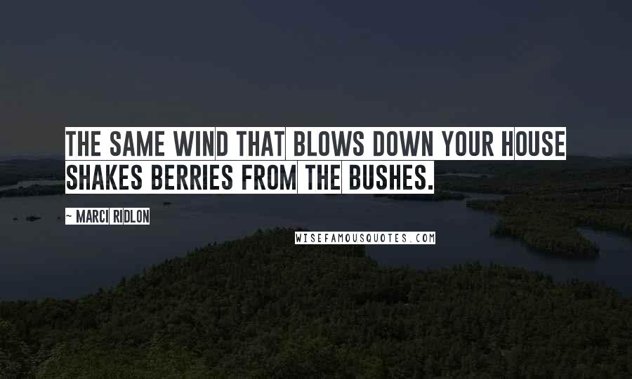 Marci Ridlon quotes: The same wind that blows down your house shakes berries from the bushes.