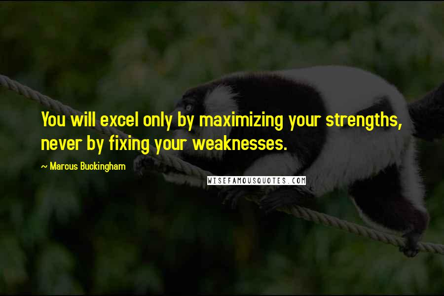 Marcus Buckingham quotes: You will excel only by maximizing your strengths, never by fixing your weaknesses.