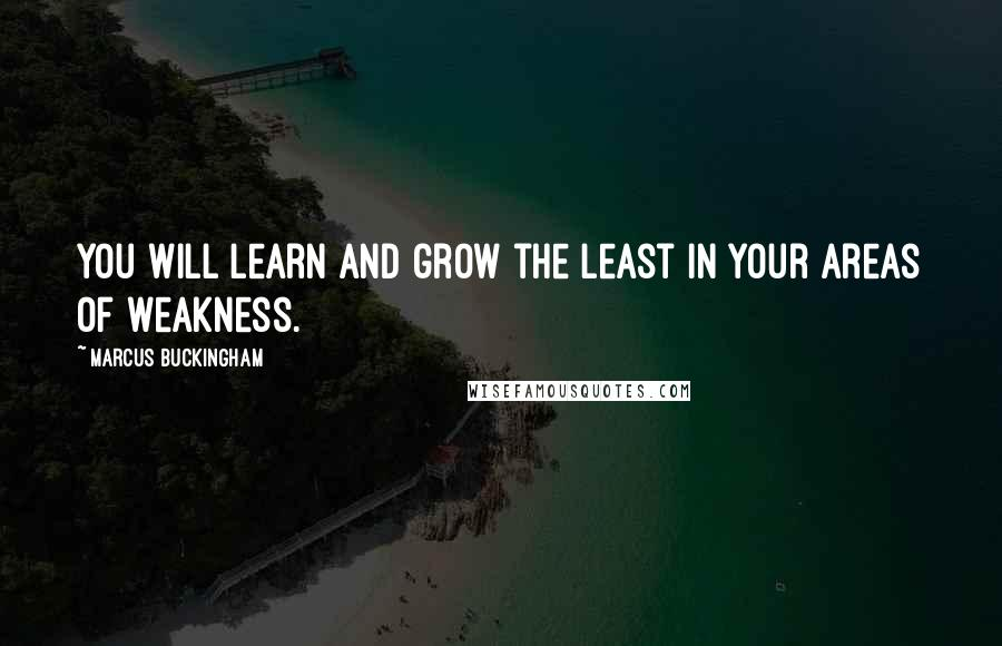 Marcus Buckingham quotes: You will learn and grow the least in your areas of weakness.