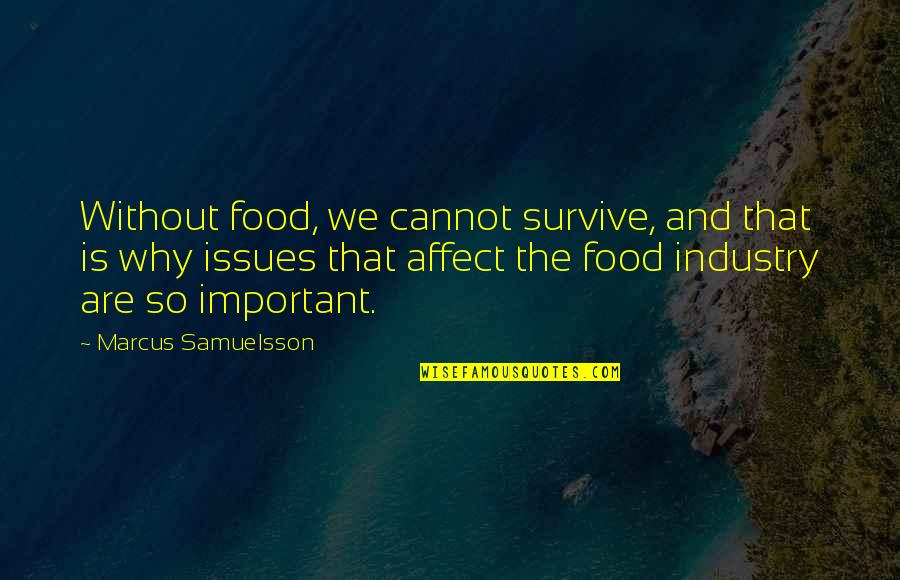 Marcus Samuelsson Quotes By Marcus Samuelsson: Without food, we cannot survive, and that is