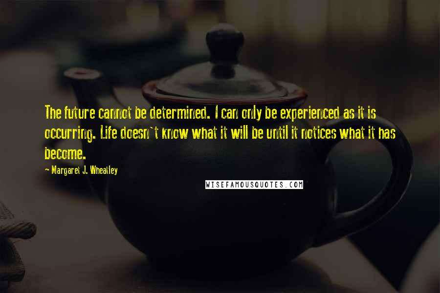 Margaret J. Wheatley quotes: The future cannot be determined. I can only be experienced as it is occurring. Life doesn't know what it will be until it notices what it has become.