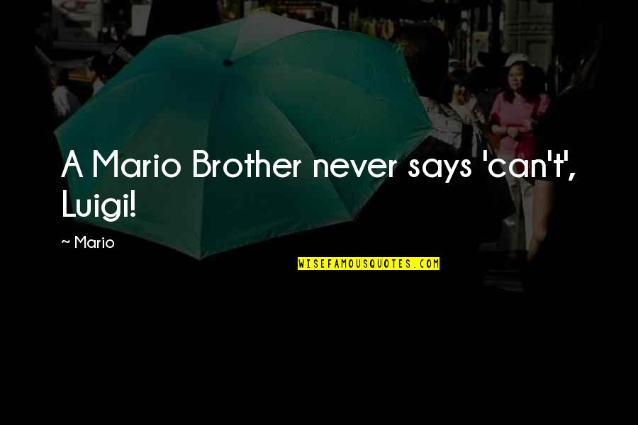 Mario And Luigi Quotes By Mario: A Mario Brother never says 'can't', Luigi!