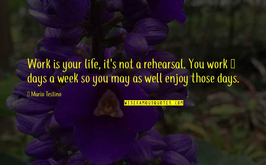 Mario Testino Quotes By Mario Testino: Work is your life, it's not a rehearsal.