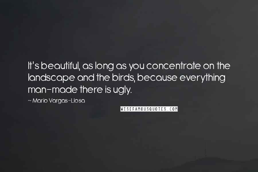 Mario Vargas-Llosa quotes: It's beautiful, as long as you concentrate on the landscape and the birds, because everything man-made there is ugly.