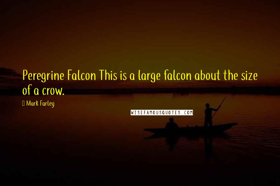 Mark Farley quotes: Peregrine Falcon This is a large falcon about the size of a crow.