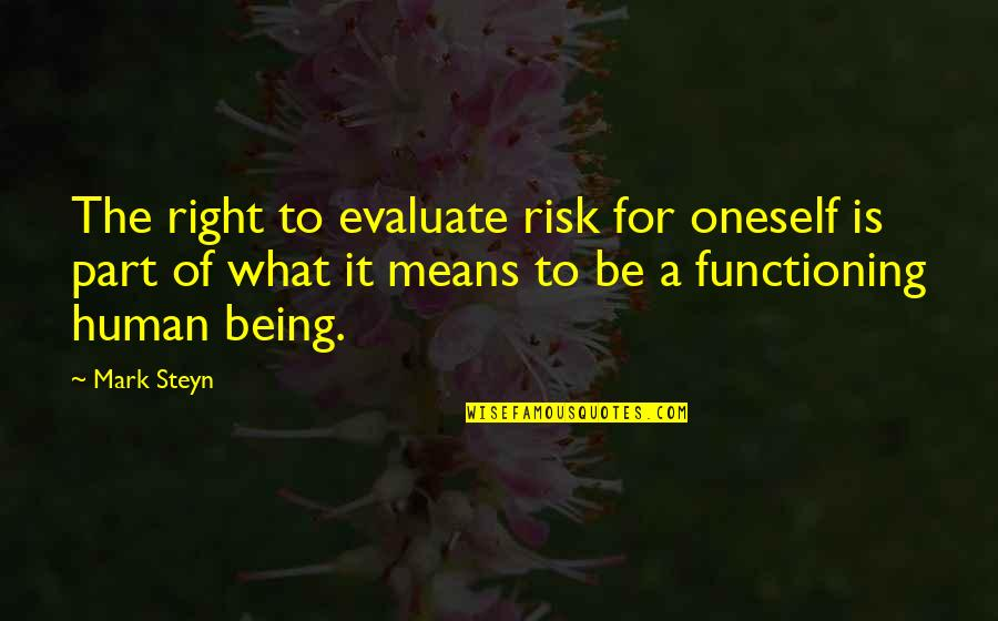 Mark Steyn Quotes By Mark Steyn: The right to evaluate risk for oneself is