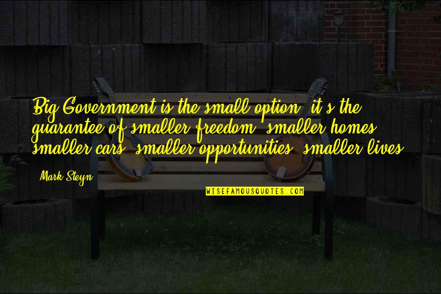 Mark Steyn Quotes By Mark Steyn: Big Government is the small option: it's the