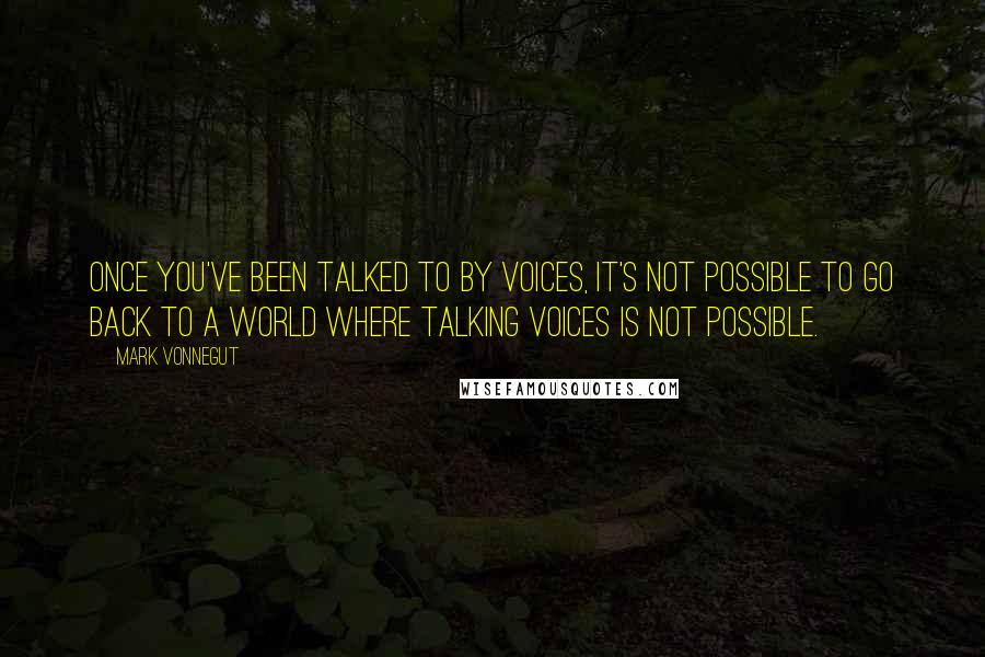 Mark Vonnegut quotes: Once you've been talked to by voices, it's not possible to go back to a world where talking voices is not possible.